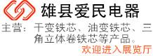 雄县爱民电器有限公司