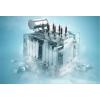 NYTRO BIO 300X生物基高性能低粘度变压器油
