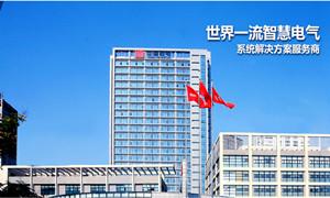 输配电装备制造业中的排头兵---中国西电集团公司