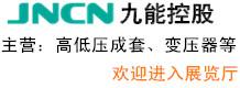 重庆九能控股有限公司