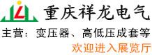 重庆祥龙电气股份有限公司